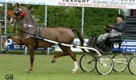 Ermalya (2009 van Manno uit Trudalya elite sport van Milano)