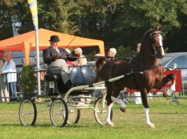 Eebert wint Oregon trofee