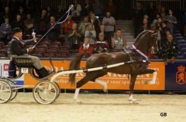 Eebert wint ook KWPN hengstencompetitie