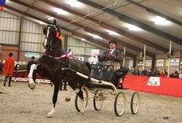 Renvyle Imondro en Bommelstijn's Hubert winnen in Hellendoorn