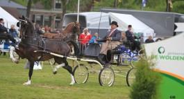 Bommelsteijn's Hubert wint competitie