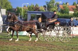 Hubert en Imondro debuteren met span overwinning