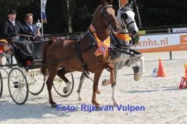 Zilver met Dijkgraaf Hippiade kampioen
