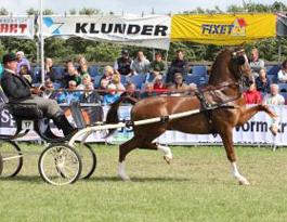 Unaniem (2001 Renovo uit Desiree keur/pref/sport van Waterman  )